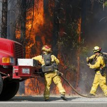 Pražūtingi miškų gaisrai Kalifornijoje: žuvo mažiausiai aštuoni žmonės