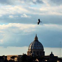 Lietuva Vatikanui perdavė vyskupo V. Borisevičiaus bylą dėl paskelbimo palaimintuoju