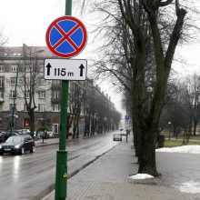 Mieste planuojami du svarbūs objektai