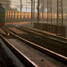 Vilniaus rajone ant geležinkelio bėgių rastas žuvęs paauglys