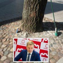 R. Šimašius piktinasi: degradai niokoja Vilniaus medžius