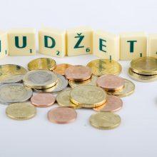 Lietuvos biudžeto perteklius pernai siekė 0,5 proc., skola – 39 proc. BVP