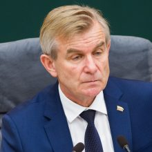 Seimo vadovas: didelių pokyčių santykiuose su Rusija tikėtis neverta