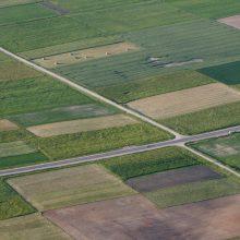 Siūloma įteisinti galimybę laikinai išsinuomoti nenaudojamą valstybinę žemę