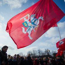 R. Karbauskis iš stalčių ištraukė konservatorių projektą dėl Vyčio vėliavos