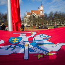 Prašo Seimo politinės valios dėl Vyčio Lukiškių aikštėje