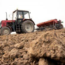 Sprendimas dėl situacijos žemės ūkyje tyrimo – atidėtas
