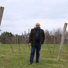 Vynuogynai ir vyno ūkiai Lietuvoje: kai hobis tampa verslu