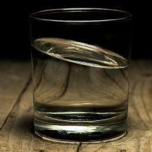 Iš čiaupo – vanduo su lervomis: specialistai sako, kad sveikatai nekenkia