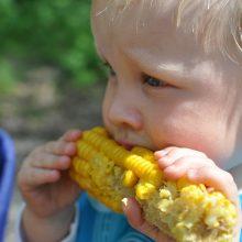 Specialistė patarė, kaip neturint laiko maitinti vaikus sveikiau