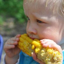 Dietologė: nauja vaikų mitybos tvarka yra gera