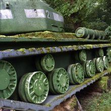 E. Vėlyvis: mano šou, tai kodėl negaliu į sceną atsivaryti sovietinio tanko?