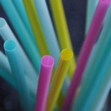 ES sutarė uždrausti naudoti daugumą vienkartinių plastikinių gaminių