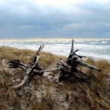 Baltijos jūroje – tiksinti bomba: gresia net ekologinė katastrofa