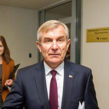 Seimo pirmininkas ragina vienodinti sąlygas partijoms ir rinkimų komitetams