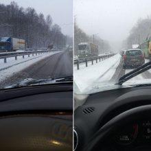 Po gausaus sniego – sąmyšis Kauno gatvėse