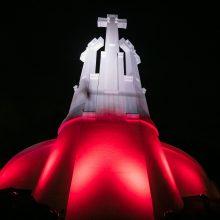 Vilniuje – išskirtinis dėmesys Nepriklausomybės dieną mininčiai Lenkijai