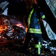 Alytuje iš gaisro išgelbėti trys šunys