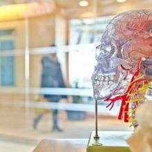 Neurologija: gydymosi būdai, apie kuriuos galbūt dar nežinojote