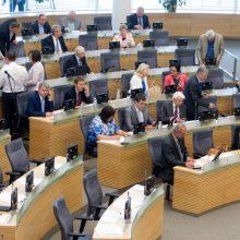 Ekspertas: Seimo narių skaičiaus mažinimas – rizikingas