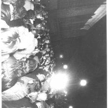 Įrodymas: Vasario 16-osios spontaniško mitingo dalyvių nuotrauka, kurią spėjo padaryti Linas.