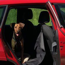 Viltis: tikiuosi, neuždarysite manęs automobilyje, kai taip karšta lauke?