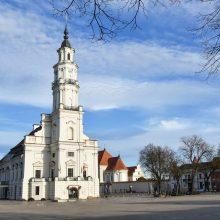 Kauno Baltosios gulbės laukia pokyčiai: architektai pradeda darbą