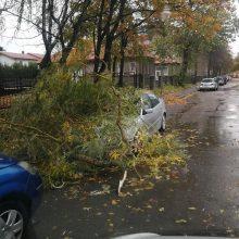 Pajūryje stiprėja vėjas: laužomos medžių šakos, apgadintas BMW
