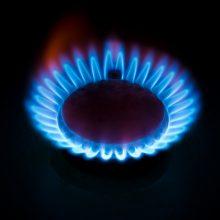 Nuo sausio brangsta elektra ir dujos