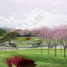 Uostamiestį papuoš įspūdingas sakurų parkas