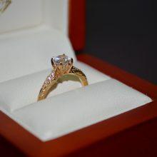Žaliakalnyje iš buto dingo žiedas su briliantais, kompiuteriai, 2 tūkst. eurų