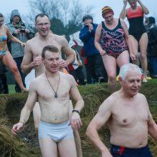 Kauno ruoniai paniro į ledinį Nemuną