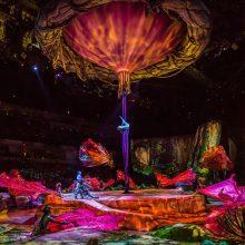 """""""Cirque du Soleil"""" šou artistai paneigė žmogaus judėjimo dėsnius"""