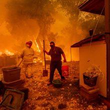 Kalifornijos miškų gaisrai – didžiausias ugnies siautėjimas per valstijos istoriją
