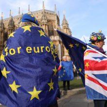 """Auga """"kietojo Brexito"""" tikimybė: trys rizikos Lietuvai"""