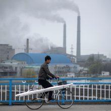 Sukrečianti Šiaurės Korėjos realybė: nuo bado gelbėjo ryžių šaknys ir pušų žievė