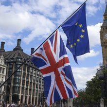 """ES šalys palaiko su Londonu suderintą """"Brexit"""" sutarties projektą"""