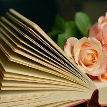Knygų apžvalgos: ką verta perskaityti?