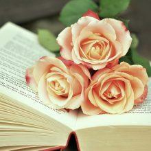 Keturios knygos ilgiems rudens vakarams