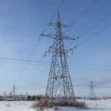 ESO: elektros neturi apie 2 tūkst. vartotojų