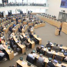 Seime – kritika NSGK tyrimo išvadoms: svarbiausios citatos