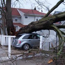 Lietuviams svarbiausia apdrausti automobilį ir namus