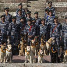 Nepale švenčiama šunų šventė
