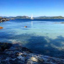 Slaugytojas Norvegijoje: čia dirbu, o ne ariu