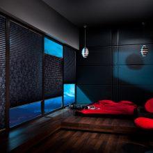 Pasirinkimas: plisuotos žaliuzės – puikus langų dengimo būdas norintiesiems sukurti modernų ir stilingą interjerą.