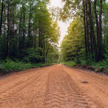 Kleboniškio miške pluša kelininkai – atnaujinami dviračių ir pėsčiųjų takai