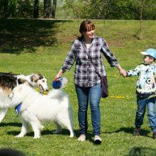 Santakos parke rinkosi šunys, poniai, alpakos