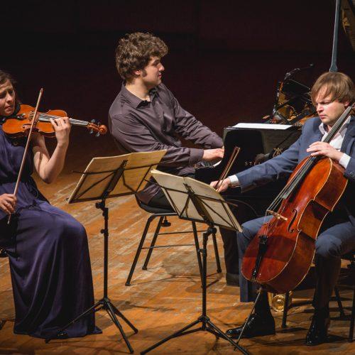 """Koncertas """"Prancūziškas aromatas""""  © Vytauto Petriko nuotr."""