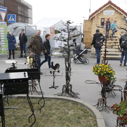 Klaipėdiečiai domisi statybos sektoriaus naujovėmis  © Vytauto Liaudanskio nuotr.