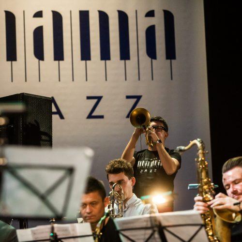 """Prasidėjo """"Vilnius Mama Jazz"""""""